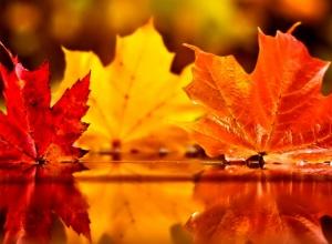 Осенний массаж